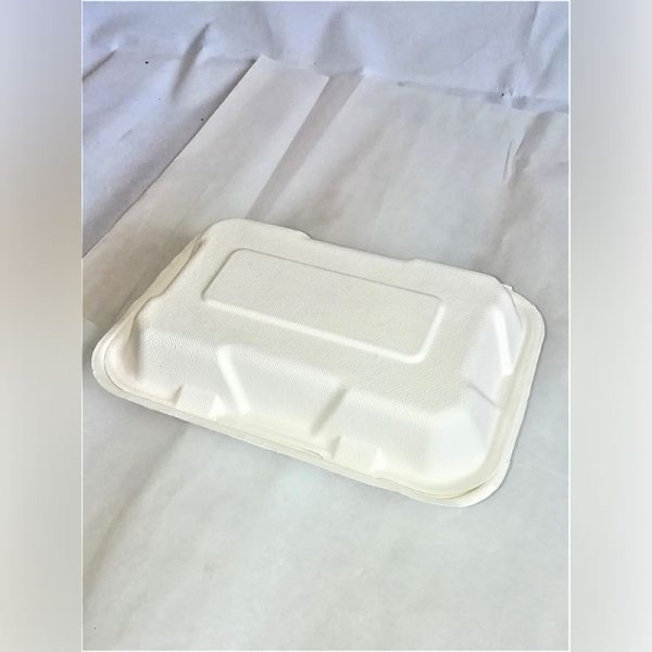 COMPOSTABLE MEAL BOX