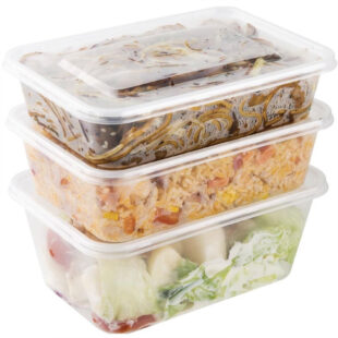 PLASTIC FOOD CONTAINER & LID