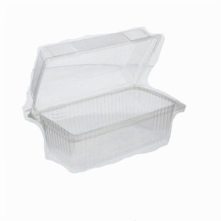 CARROT CAKE CONTAINER